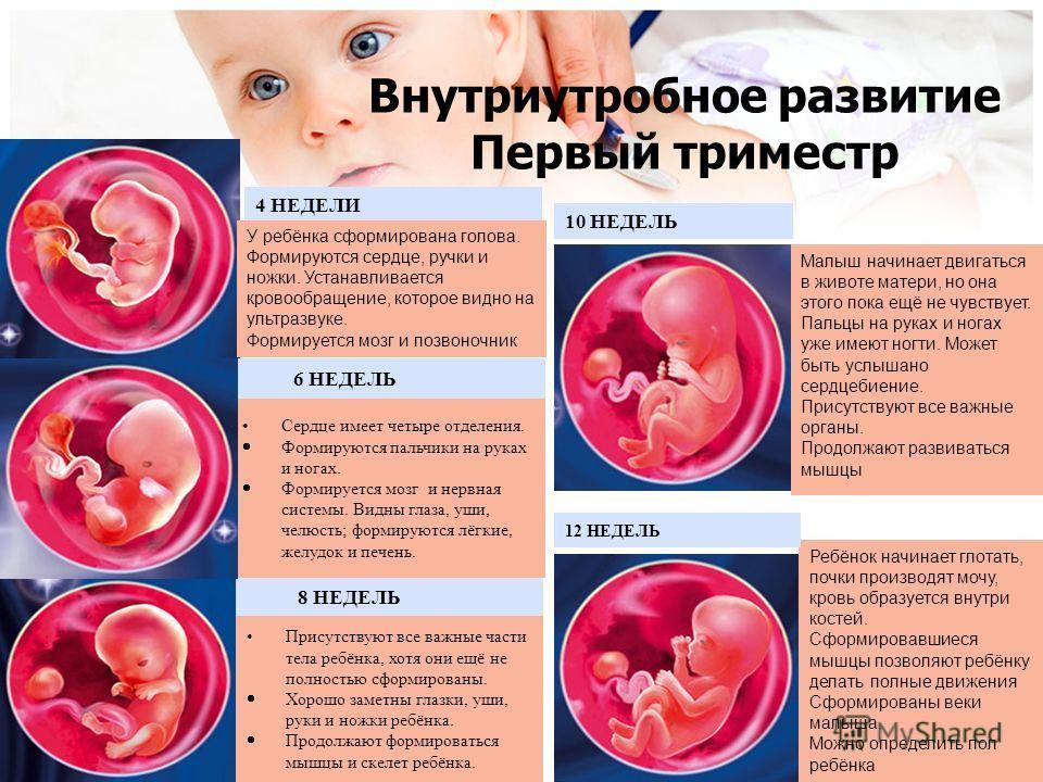 Состояние беременной женщины по неделям 37
